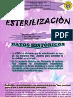 GrupoNº4Esterilizaciòn
