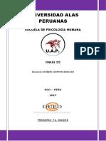 Trabajo Academico UAP INGLES