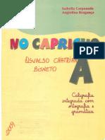 Caligrafia No Capricho