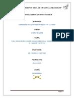 Metodologia de La Investigacion(Tala Indiscriminada de Arboles)