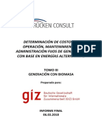 Estudio Costos Fijos OMA-BIOMASA-Informe Final 06032018
