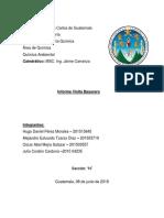 Informe Basurero