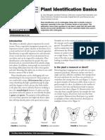 Plant Identification Basics