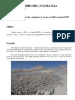 Informe Mineral FF3 - MDV.