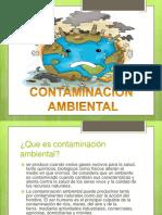 contaminacionambiental-160319151844.pdf