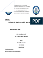 Tp01 Ben Necib m1 s2