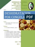 Deshidratcion Por Congelacion[1]