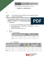 Modelo de Informe de AF