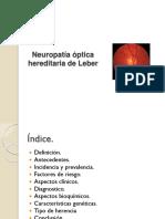 Neuropatía Óptica Hereditaria de Leber