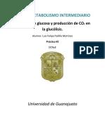 Lab Metabolismo Reporte #2
