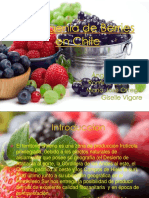 Transgenia de Berries.ppt