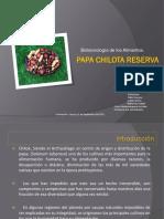 Papa Chilota Reserva Genética - copia.ppt