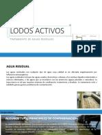 LODOS-ACTIVOS