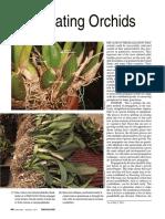 Propagatingorchids.pdf