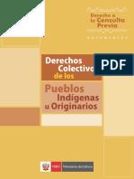 Derechos Colectivos
