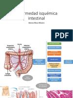 Isquemia Int