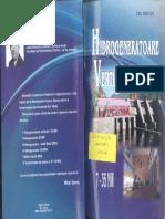 8. Emil Mârzan - Hidrogeneratoare Verticale, Vol. I