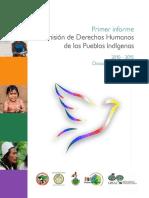 Derechos Humanos Pueblos Indigenas