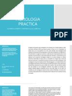 HIDROLOGIA PRACTICA.pptx