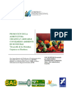 Informe Hortaliza Orgánica VF