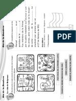 actividades_primer_ciclo.pdf