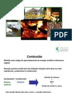 TPF_Combustão.pdf