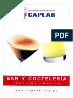 tecnicas basicas de bar y cocteleria.pdf