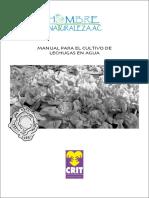 16043717-MANUAL-CULTIVO-CON-HIDROPONIA.pdf