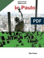 Cidades Ilustradas - Sao Paulo.pdf