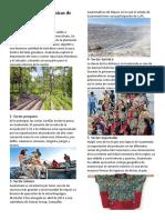 10 Actividades Económicas de Guatemala