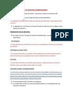 Apuntes Derechos Fundamentales (1)