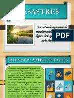DIAPOSITIVAS RIESGOS AMBIENTALES
