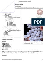 Candida Albicans (Pathogenesis) - Microbewiki