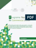 Protocolo Guanajuato(1)