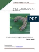 InformefinalEEB_Spodoptera frugiperda