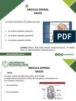 Venas y Caso Clinico ( Medula).pptx