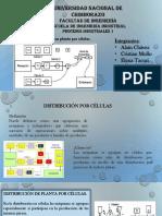 Procesos Distribucion Celular