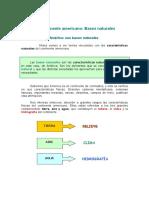 RECURSO CONTINENTE AMERICANO.pdf