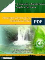 Estrategia-Nacional-de-Cuencas.pdf