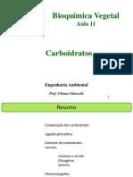 Aula 9 Carboidratos