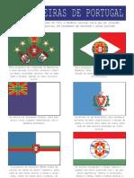Centenário da República em Portugal - As propostas de bandeira nacional em 1910