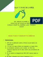 clase vesícula y vb