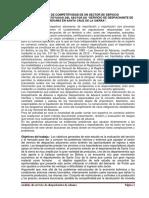 Tema. Servicio Agencia Despachante