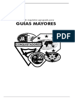 Guia Mayor