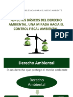 Conferencia_08-01-2015_DerAmbiental.pdf