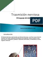 trasmisinnerviosa2-120909152148-phpapp02