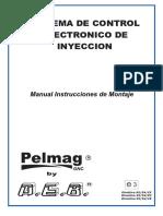 INSTRUCTIVO_DE_INSTALACION_AEB-Pelmag.pdf