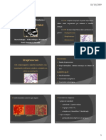 Estreptococos.pdf