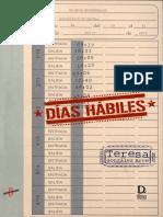 Gonzalez Arce, T - Dias Habiles