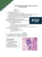 LP 6 Histologie - Glandele Endocrine